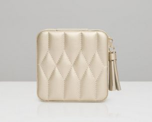 Champagne Zip Travel Case